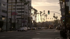Hollywood Boulevard palm trees with green traffic light at sunset in Los Angeles Stock Footage