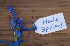 Grape Hyacinth, Label, Hello Spring Stock Photos