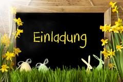 Sunny Narcissus, Easter Egg, Bunny, Einladung Means Invitation Kuvituskuvat