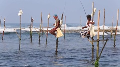 Fishermen are fishing in unique style.  Sri Lanka in Indian ocean Stock Footage