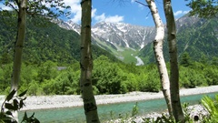 Greenery in Kamikochi, Nagano Prefecture, Japan Stock Footage