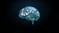 Low polygon Brain, connect digital lines, grow future artificial intelligence.2 Stock Footage