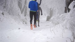 Three winter runners running on a snow covered forest trail on a foggy day. Arkistovideo