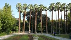 4K National Garden palm trees Athens Athina Athen Greece Europe Stock Footage