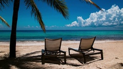 Sunbeds on exotic beach under a palm tree Stock Footage