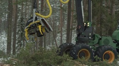 Freight forwarder working in the forest, cutting the trees Stock Footage