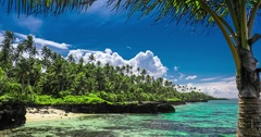 Tropical beach on Samoa Island with palm trees Stock Footage