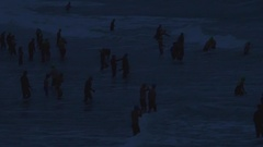 Triathletes get ready at dawn to compete in a triathlon. Stock Footage