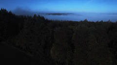 Foggy Forest at night in germany Stock Footage