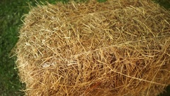 Bale of hay tied with string Stock Footage