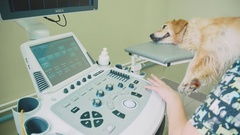Close-up of the machine control panel for ultrasound diagnostics Stock Footage