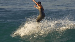 A young woman in a wetsuit surfing on a longboard surfboard. Stock Footage