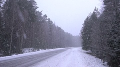 Snow coming down in the forest. Stock Footage