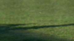 A batter runs to first base at a baseball game, slow motion. Stock Footage