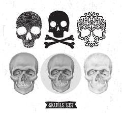 Skull set design element Stock Illustration