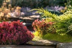 Beautiful landscape design Stock Photos
