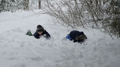 Two little boys are crawling on the snow-covered forest, 4k footage Stock Footage