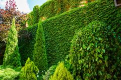 Beautiful landscape design Stock Photos