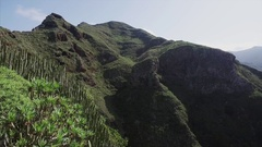 Scenery from Anaga National Park. Stock Footage