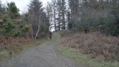 A man doing a wheelie trick mountain biking in the woods. Stock Footage