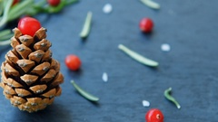 Fir-tree with pine cone, cranberry, rosemary Stock Footage