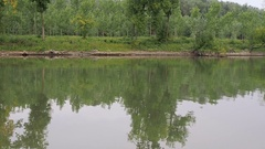 Motor boat is floating by river, rippling water, motor boat trace, summer, green Stock Footage