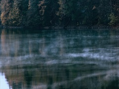 Foggy Lake and Forest wild morning landscape Travel serene scenic view Stock Footage