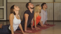 Fitness group doing cobra pose in row at the yoga class Stock Footage