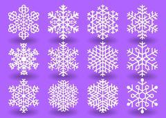 Twelve white snowflakes. Stock Illustration