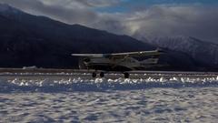 Alaska Bush Plane Taxi on Winter Runway Stock Footage