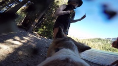 POV of a dog shaking on a trail in the mountains, slow motion. Stock Footage