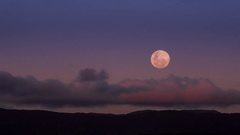 Super moon rising over Eastbourne, Wellington New Zealand Stock Footage