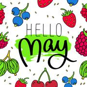Hello, may. Fashionable calligraphy. Stock Illustration