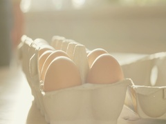Chicken Eggs in a Box Stock Footage