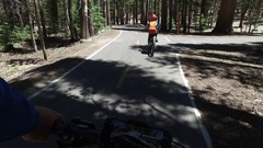 A boy rides his mountain bike on a paved trail in the woods, time-lapse. Stock Footage