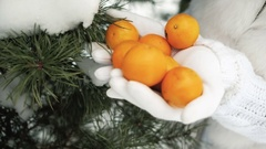Tangerines in palms against background of winter landscape Stock Footage