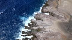 AI Rocks Coast Bird Island Stock Footage