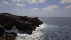 AI Seagull BIrd Ocean Rocks Stock Footage