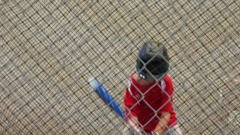 A boy practices baseball at the batting cages. Stock Footage