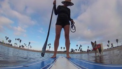 POV of a woman and dog paddling an SUP stand-up paddleboard on a lake. Stock Footage