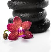 Pyramid of black zen stones and red orchid, phalaenopsis on white backgroun.. Stock Photos