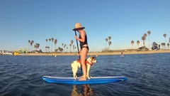 POV of a woman, boy and dog paddling an SUP stand-up paddleboard on a lake. Stock Footage