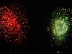 Firework Display in Tokyo Stock Footage