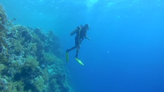 Scubadiver communicates signs hanging in the blue water near coral reef, Red Stock Footage