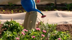 Man watering the beds in garden. Stock Footage
