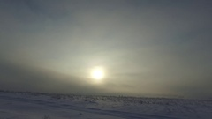 Winter forest sun and snow-covered road Stock Footage