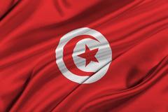 Flag of Tunisia. Stock Illustration