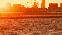 London City Airport - Closeup shot showing a sunset landing Stock Footage