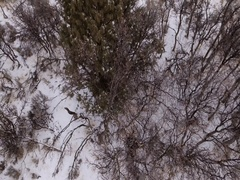 Aerial ascending shot of snowy mountain covered in sage brush Stock Footage