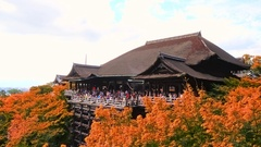 Kiyomizu-dera Temple in autumn with blue sky, Kyoto, Japan Stock Footage